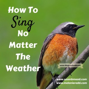 how to sing. Have you ever lost your desire to sing when it's dreary outside? This post includes a powerful scripture to help you keep your singing voice.
